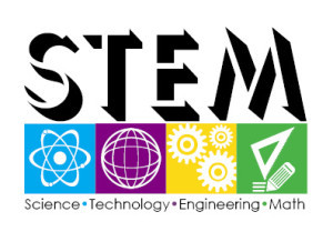 what-is-a-stem-degree